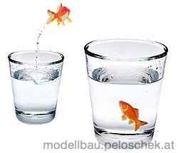 goldfisch_trinkglas